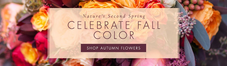 Celebrate Fall Flowers This Year with Fresh-cut Flowers