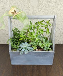 Wooden caddy container filled with succulents and adorned with a butterfly decoration.