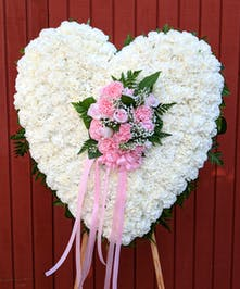 Sympathy heart of all white carnations accented with pink roses and carnations.