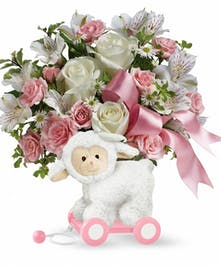 Pink Sweet Little Lamb in Rowland Heights, Whittier, Glendora, CA