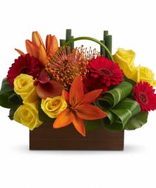 Orange, red and yellow flowers in a modern cube vase.