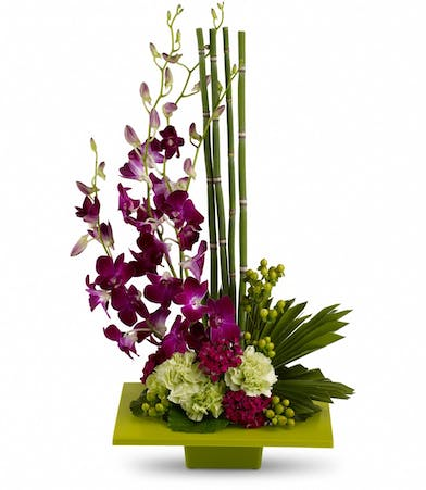Purple dendrobium orchids and greenery in a square green container.