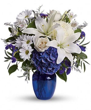 White flowers and dark blue hydrangea in a dark blue glass vase.